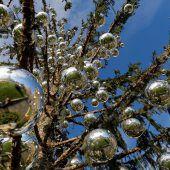 Schadenersatz für Christbaum