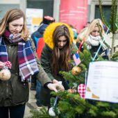 Viele halfen beim Dekorieren von Christbäumen zugunsten der Lebenshilfe. A8