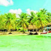 Karibik-Feeling mit Barrakuda