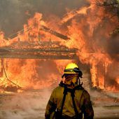 Zehntausende fliehen vor Waldbränden