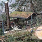 Massive Sturmschäden im Feldkircher Wildpark
