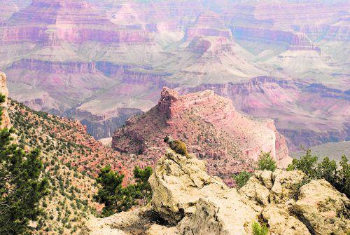Der Grand Canyon ist bis zu 1,6 Kilometer tief und 446 Kilometer lang.beate rhomberg