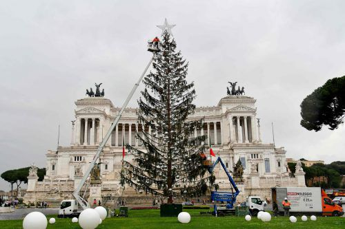 Roms kahle Fichte hat im vergangenen Jahr für Spott gesorgt. AFP