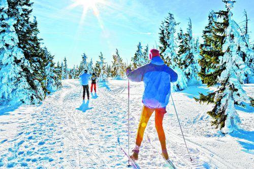 Auch im Böhmerwald kann man sich im Winter dem Sport hingeben.