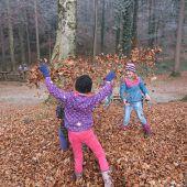 Begehung für Waldspielplatz-Sanierung