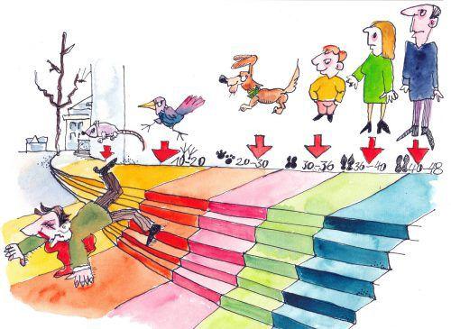 """""""d´Rätscho"""" deckt die Tücken der Treppe in der Fußgängerzone auf. M. Rhomberg"""