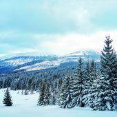Skifahren im Riesengebirge