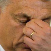 Schwiegersohn von Orban unter Druck