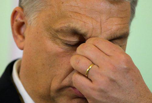 Orban in Bedrängnis: Sein Schwiegersohn soll EU-Fördergelder missbraucht haben.RTS
