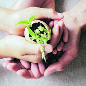 Friedenserziehung nach Maria Montessori