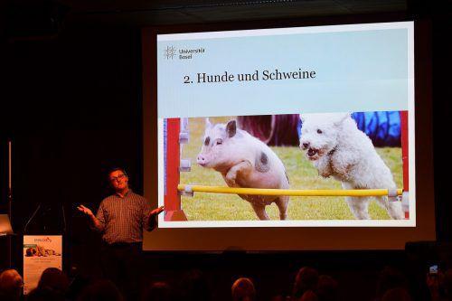 Markus Wild beschreibt Hunde und Schweine als gleich intelligente und empfindungsfähige Tiere. Animalicum