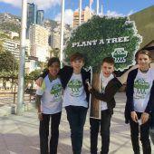 Eine Billion Bäume für die Rettung des Planeten
