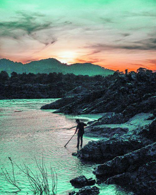 Über 1300 Fischarten leben im Mekong. Er zählt damit zu den fünf artenreichsten Flüssen der Welt.