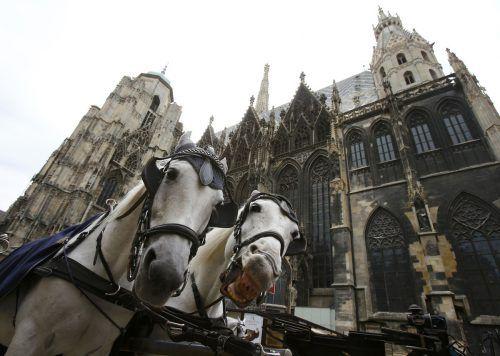 Wien landete zum neunten Mal auf Platz 1 der Mercer-Studie. Reuters