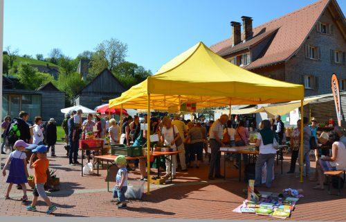 Bei strahlendem Sonnenschein fand der Pflanzen- und Saatgut-TAUSCHmarkt statt. Burtscher