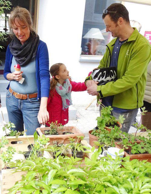 Beim Bio-Jungpflanzenmarkt wird eine große Auswahl geboten. tf