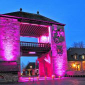 Rosarote Burgen und Monumente