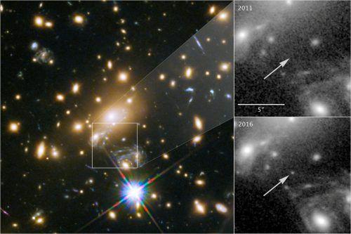 Der Stern konnte nur dank dem Gravitationslinseneffekt überhaupt beobachtet werden. NASA