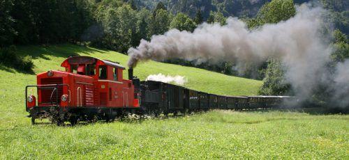 Der Umsatz der Wälder Museumsbahn lag bei rund 282.000 Euro.