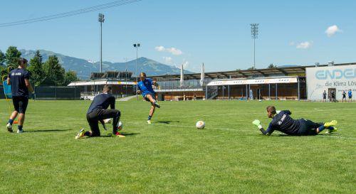 Die sonnige Trainingswoche kommt auch den Torleuten entgegen, von links: Martin Kobras, Benjamin Ozegovic, Tormanntrainer Sebastian Brandner und Andreas Lukse.VN-Stiplovsek