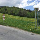 In Bürserberg wird aus Rot Grün