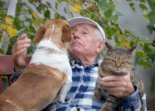 Im Kontakt mit Tieren fühlen sich Menschen mit Demenz sicherer als im Umgang mit Menschen. FOTOLIA