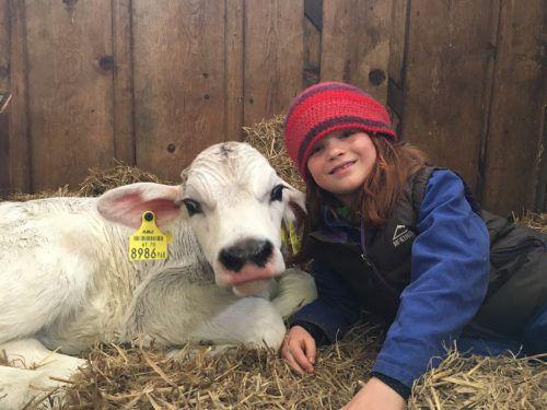 Tieren soll ein artgerechtes Leben ermöglicht werden. Dazu gehört auch, dass sie nicht sinnlos herumgekarrt werden. Monika Bischof