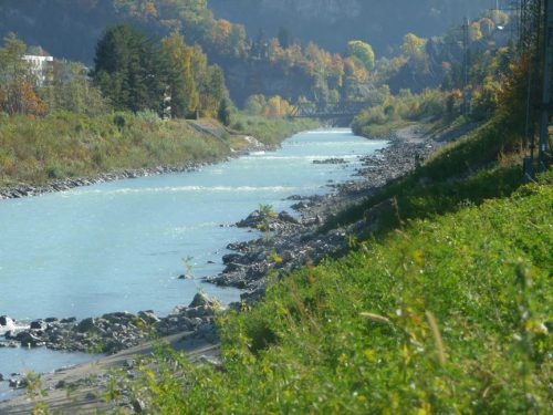 Bei der Exkursion gibt es Einblicke in Wasserbauprojekte und in das Leben der Biber.