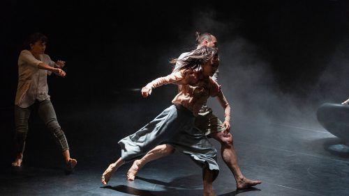 """Das Panorama Dance Theater aus St. Gallen präsentiert die neuen Produktion """"Big Bird"""". p. d. theater"""