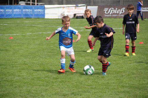 Die kleinen Fußballer von U7 bis U11 gaben beim Turnier alles.