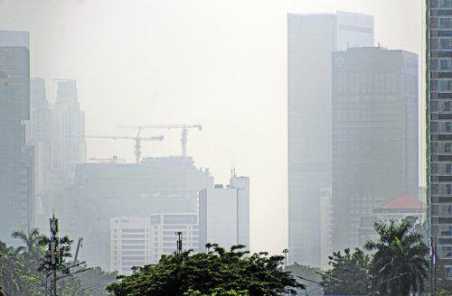 Die WHO wertete Daten aus mehr als 4300 Städten in 108 Ländern und damit die größte Datenbank über Luftverschmutzung weltweit aus. APA