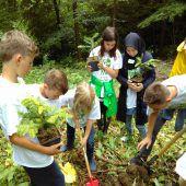 Vorarlberger Umweltwoche: Schaufenster für über 80 Veranstaltungen