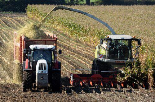 Europas Bauern sollen die Milliardenhilfen gekürzt werden. dpa