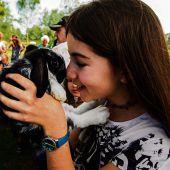 Kaninchen zum Kuscheln und Liebhaben