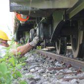 Das nach einem Sabotageakt entgleiste Rheinbähnle ist wieder auf den Schienen. B1