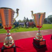 BG Feldkirch gewinnt