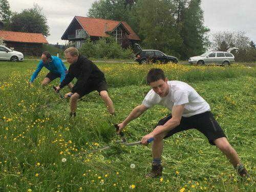 Für Fabian Winder, Mathias Lenz und Jakob Winder wird es am Samstag ernst. Beim Wettkampf in Alberschwende ist schnelles Mähen gefragt.  VN/mef