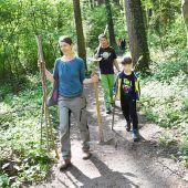 Kinder forsten mit Eltern Wälder wieder auf