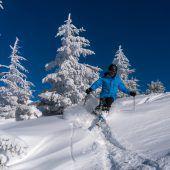 Wälder Wintertourismus über Millionenmarke