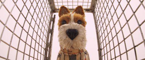 Im Japan der Zukunft ist die Hundepopulation explodiert. Ein Großteil der Vierbeiner leidet an der gefährlichen Hundegrippe, die die Regierung zum Handeln zwingt. AP