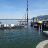 Neuer Badesteg für Bregenz
