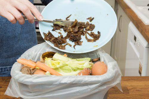 Mittelschüler kritisieren, dass so viele Lebensmittel im Müll landen.