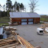 Rodungen für Forsthof Gisingen