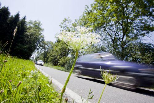 Verkehr durchs Ried gibt es heute bereits. Tausende Pkw fahren täglich auf der Senderstraße und der Hofsteigstraße.VN/Hartinger