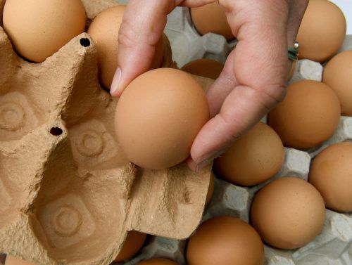 73.000 mit Fipronil belastete Eier waren vor der Entdeckung der Belastung schon an den Handel geliefert worden. AFP