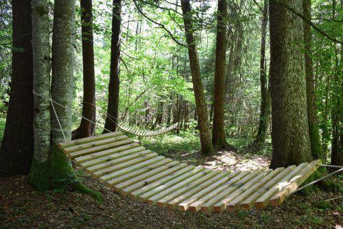 Auf dem neu gestalteten Tobelweg wird Wandern zum speziellen Naturerlebnis. lcf