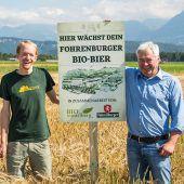 Bio-Gerste für das Bio-Bier