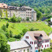 Städtischer Weingarten in Bregenz eingeweiht
