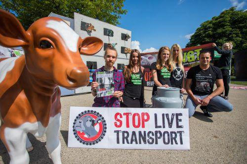 Der Verein gegen Tierfabriken demonstrierte am Donnerstag gegen Tiertransporte. VN/Steurer