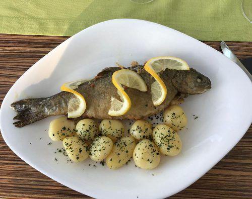 DIe knusprig gegrillte Bachforelle mit Salzkartoffeln und Salat.